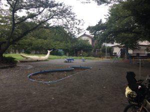 稲田公園の様子。子供連れに人気の稲田公園レポ!川崎市多摩区の多摩川沿い(関東・神奈川)
